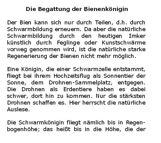derbien11