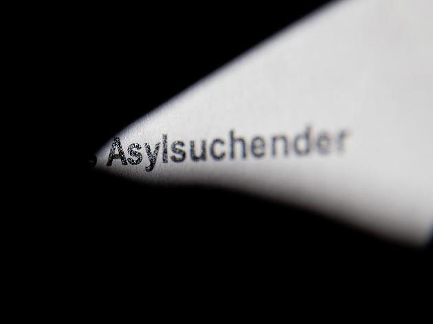 asylerschleicher