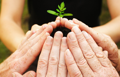 Wachstum mit Teamwork