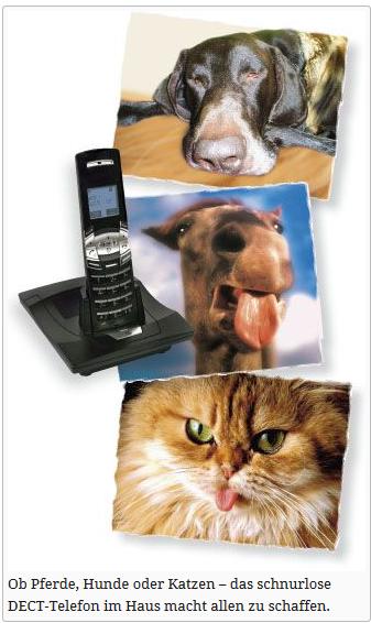 dect telefone schädlich für leben