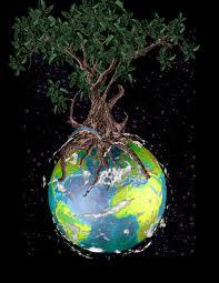 erdenbaum