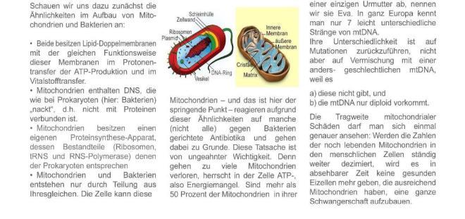 mitochondrien...5