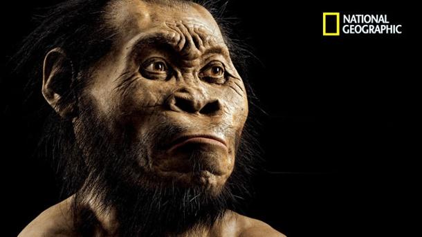 der-palaeontologe-john-gurch-hat-eine-rekonstruktion-des-homo-naledis-angefertigt-so-koennte-die-neue-menschenart-ausgesehen-haben-