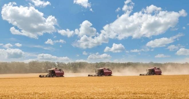Monsanto-und-GVO-Lobby-erleben-Schwarzen-Freitag-in-Russland