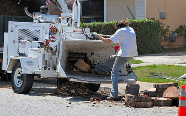 BBW345 worker trying to kick wood into a chipper in an unsafe and unprotected way (how not to use a wood chipper)
