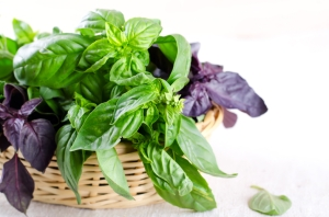Herb leaf selection in a rustic wooden basket including green and violet